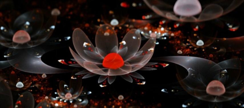 Самостоятельные гадания на цветах на любовь и отношения
