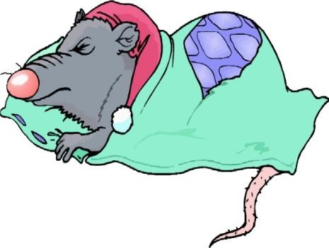 Характеристика мужчины Крысы и его совместимость в любви