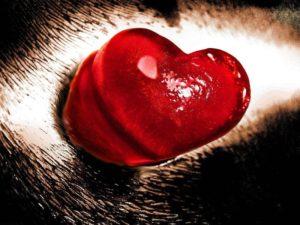 Амулет абсолютной любви