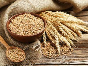 Заговор на пшеницу
