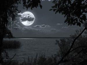 заговоры на деньги на растущую луну