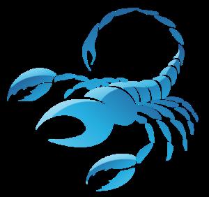 Эрогенные зоны Скорпиона